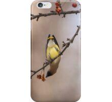 Cedar Waxwing Eating Berries 2014-1 iPhone Case/Skin