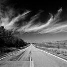 Beautiful Idaho by Daniel Sorine