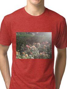 Rays on Roses Tri-blend T-Shirt