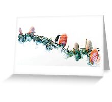Banksia and New Holland Greeting Card