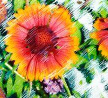 Gaillardia Sticker