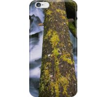 Balancing Over A Wild Forest Stream in Motion iPhone Case/Skin