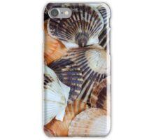 Scallop Shells iPhone Case/Skin
