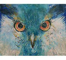 Turquoise Owl Photographic Print