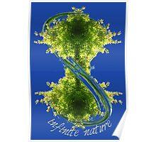 infinite nature Poster