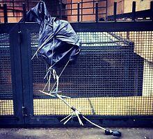broken umbrella by Claudio Pepper