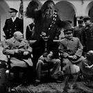 Yoda at Potsdam by atomikboy