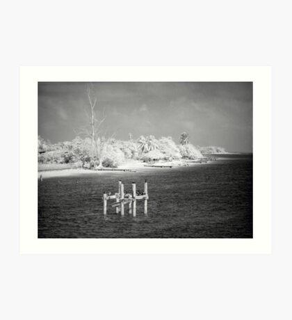 Storm-Battered Shore Art Print