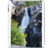 Canyon Waterfall in Pacific Canada iPad Case/Skin