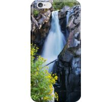 Canyon Waterfall in Pacific Canada iPhone Case/Skin