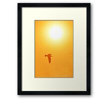 Seagull Flying Under The Morning Sun | Cutchogue, New York Framed Print