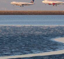 Planes Landing Sticker