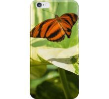 Butterfly Take-Off iPhone Case/Skin
