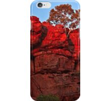 Sunrise at Durba Springs ~ Along the Canning Stock Route iPhone Case/Skin