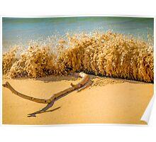 Beach Slam Dunk Poster