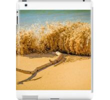 Beach Slam Dunk iPad Case/Skin