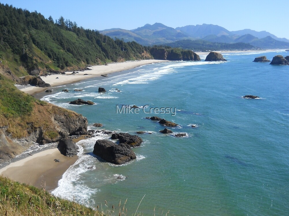 Ecola Beach, Oregon by Mike Cressy