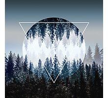 Woods 4 Photographic Print
