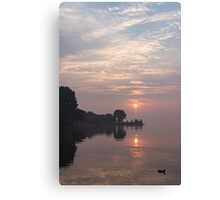 Soft Dawn - Pink Fog, Placid Water and a Duck  Canvas Print