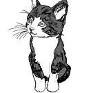 Kitty  by CrosbyDesign