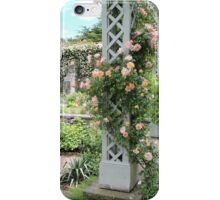 Peach & Green Trellis iPhone Case/Skin
