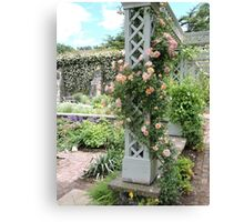 Peach & Green Trellis Canvas Print