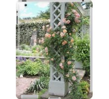Peach & Green Trellis iPad Case/Skin