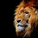 Glow Lion by Helmar Designs