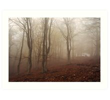 Misty wood Art Print