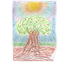 1006 - Apple Tree with Fruits under Sun Poster