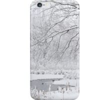 Snowy Landscape iPhone Case/Skin
