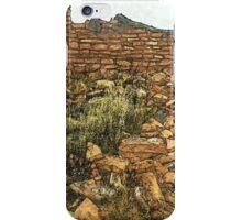 Prehistoric Southwest Pueblo Ruin iPhone Case/Skin