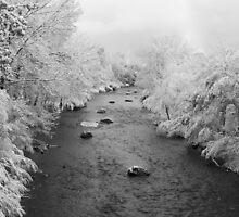 Snowy Creek by Ken Fleming