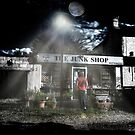 The Junk Shop by Nigel Bangert