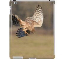 Northern Harrier Dives iPad Case/Skin