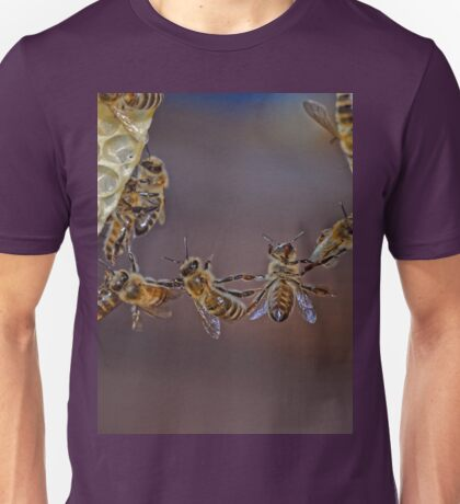 Bee acrobatics Unisex T-Shirt