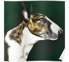 EBT Pet Portrait Poster