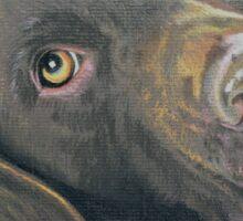 Podge the beautiful brown Labrador Sticker