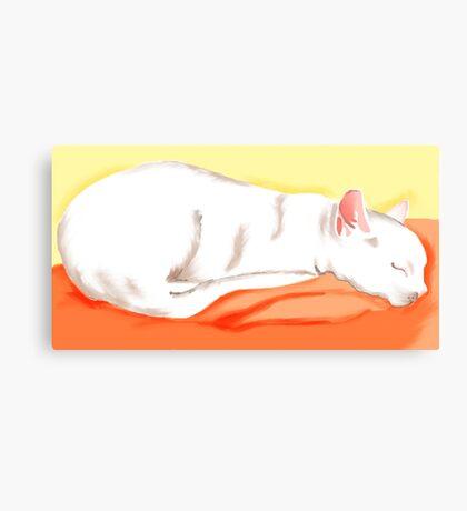 Cozy Cats - Juno Slumbers Canvas Print