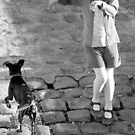 Paris - Wet Dog by Jean-Luc Rollier