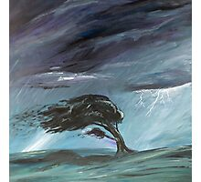 Storm Tossed Photographic Print