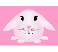 Venus Love Bunny Photographic Print
