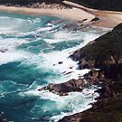 a beautiful rugged beach on the far s.e. Tas. coast  by gaylene