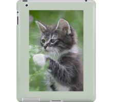 Cute Tabby Kitten Playing With Leaf iPad Case/Skin