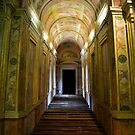 Entrance of Palazzo Ducale, Mantua, Italy by Igor Pozdnyakov