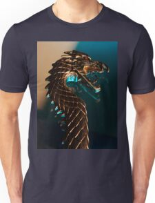 Knight of the dragon T-Shirt