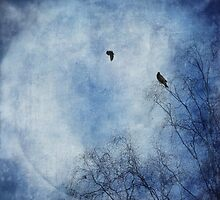 Come fly with me by Priska Wettstein