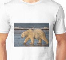 STOCK ~ Polar Bear #5 - Strolling On Ice Unisex T-Shirt