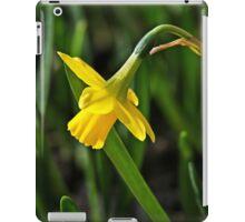 Tete s Tete Daffodil iPad Case/Skin