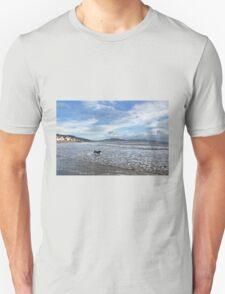 Lyme Regis Seascape 4 - January 2016 Unisex T-Shirt